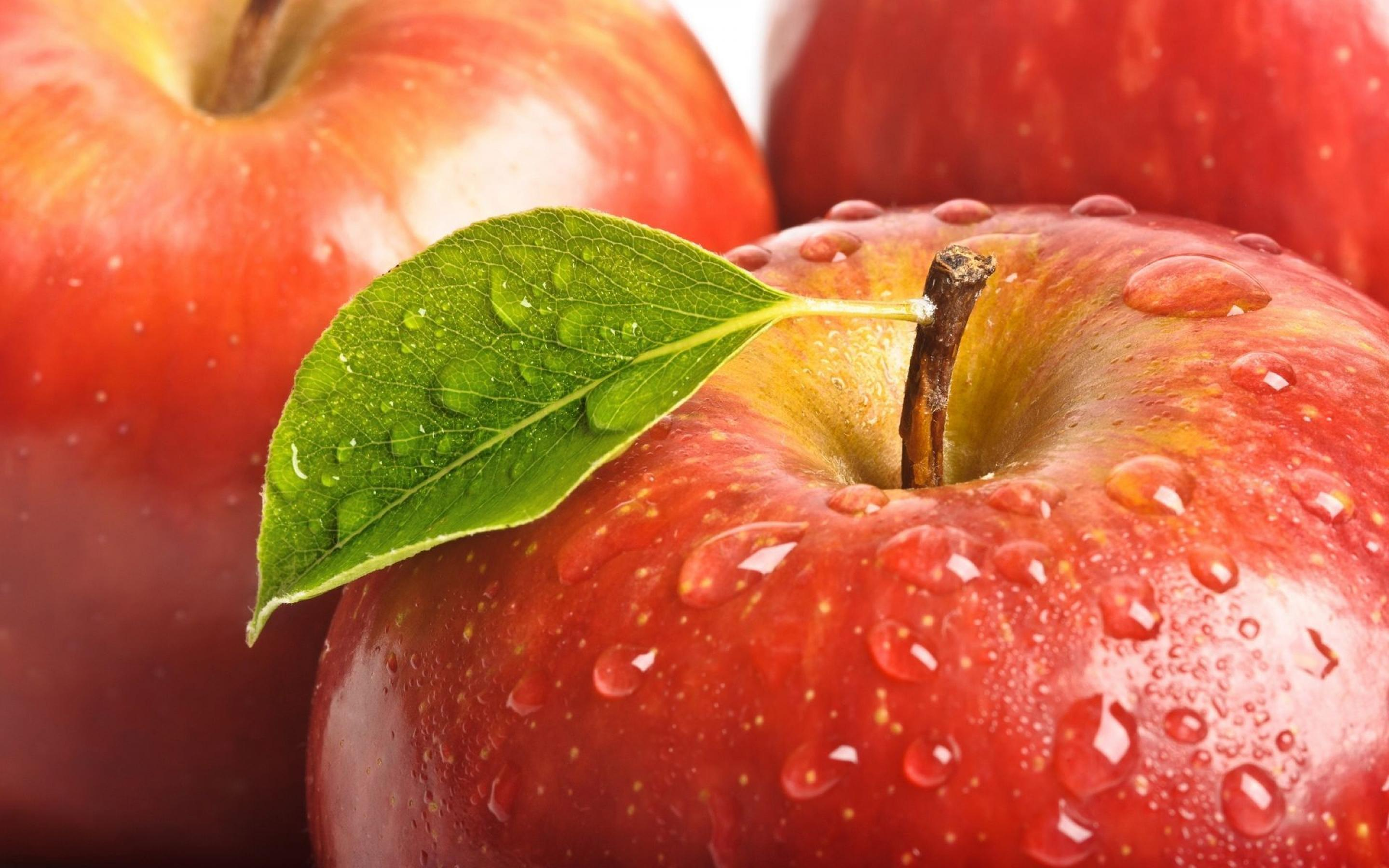 red-apples-with-water-drops